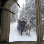 arrenslee tochten Winterberg