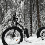 Fat Max e-step sneeuw